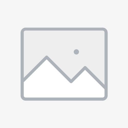 Блокиратор рулевого вала Заслон